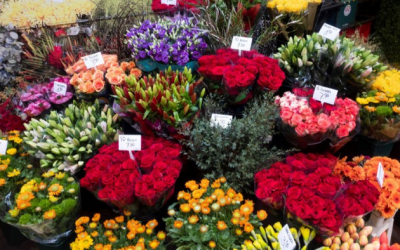 Help the growers, buy the flowers