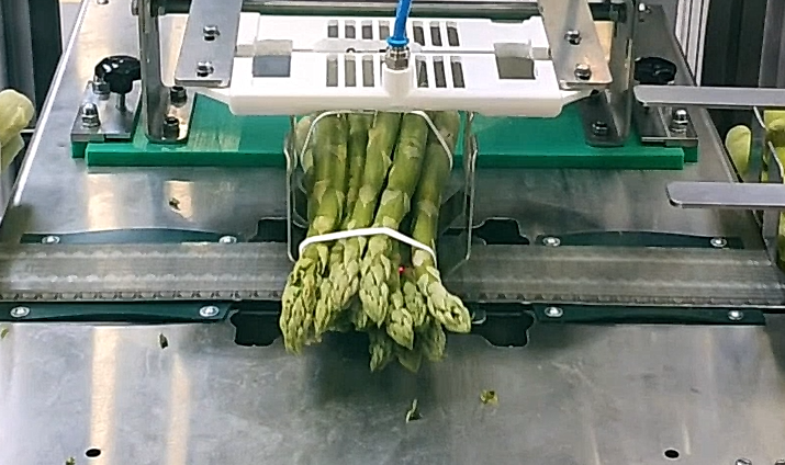 Binding solutions for vegetables Image